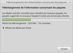 Téléchargement des mises à jour vers Linux 18.3