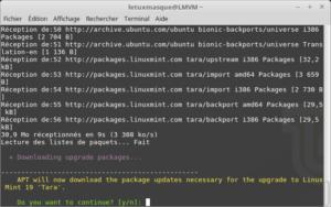 mintupgrade download - Téléchargement des paquets