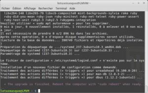 Fin de la mise à jour vers Linux Mint 19