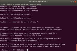 Mise à niveau vers Ubuntu 18.10 en ligne de commande - 2 - Validation upgrade