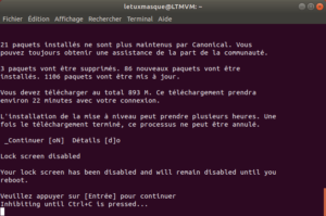 Mise à niveau vers ubuntu 18.10 en ligne de commande - 3 - validation disable lock screen