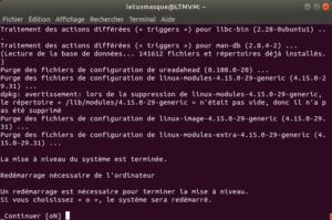 Mise à niveau vers Ubuntu 18-10 en ligne de commande - 5 - fin