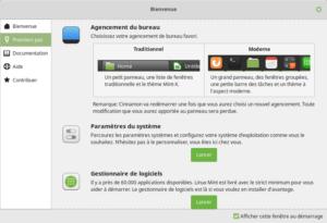 Option pour changer le thème dans le panneau d'accueil de Linux Mint 19.1