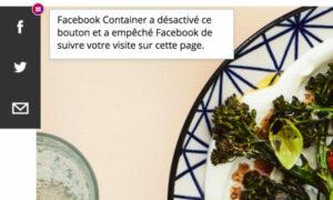 badge Facebook container sur bouton partage