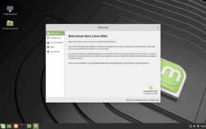 linux mint 19.2