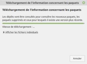 Téléchargement des infos pour la mise à jour vers Linux Mint 19.2