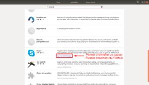 Skype au format flatpak dans gestionnaire de logiciels