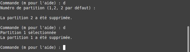 fdisk - supprimer les partitions existantes