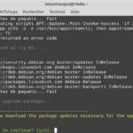 2- mintupgrade download - Téléchargements des paquets