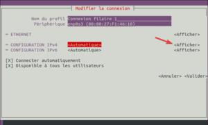 nmtui - afficher config ip pour la modifier