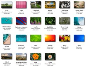 backgrounds linux mint 20