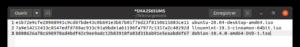 fichier sums custom pour verifier intégrité fichier sous ubuntu