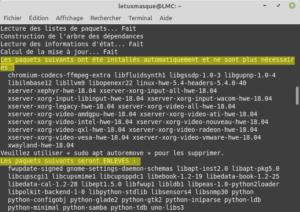 mintupgrade check - analyse des résultats de la simulation pour mettre à niveau vers Linux Mint 20
