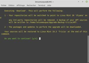 Confirmer le téléchargement des paquets pour la mise à niveau vers Linux Mint 20