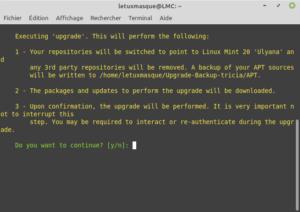 Confirmer pour mettre à niveau vers Linux Mint 20
