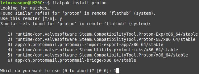 Installation extension Steam Flatpak 2